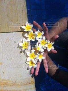 黄色い花を持っている手 - No.846527
