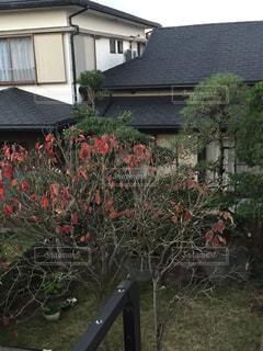 近くの家の前にフラワー ガーデンの写真・画像素材[857099]