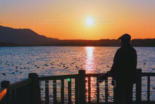 日没の前に立って。の写真・画像素材[847419]