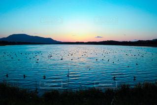 湖に沈む夕日。の写真・画像素材[847437]