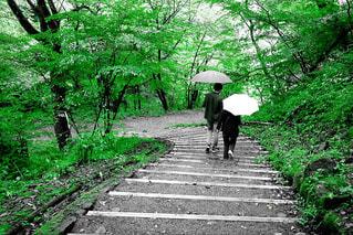 傘を保持している道を歩いている人の写真・画像素材[901017]