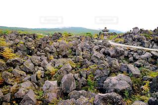 羊の立っている岩の多い丘の上の群れの写真・画像素材[901142]