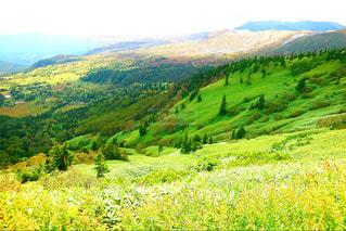 背景の山に大規模なグリーン フィールドの写真・画像素材[901147]