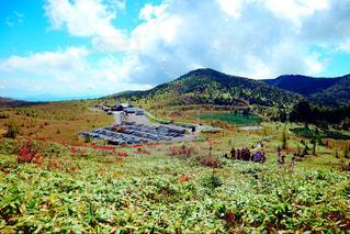 背景の山に大規模なグリーン フィールドの写真・画像素材[901151]