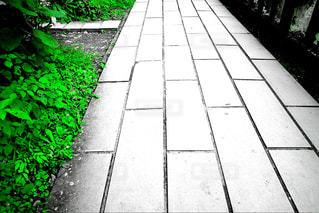 れんが造りの壁の横に小さな白い通路の写真・画像素材[901154]