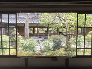 大きな窓と眺める人の写真・画像素材[2956246]