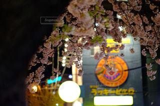 夜桜と店の写真・画像素材[846145]