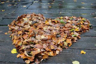 落ち葉でハートの写真・画像素材[846169]