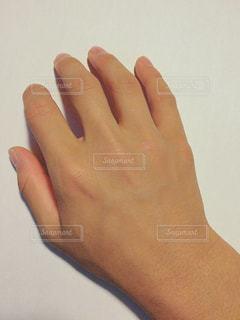 手の甲 - No.858383
