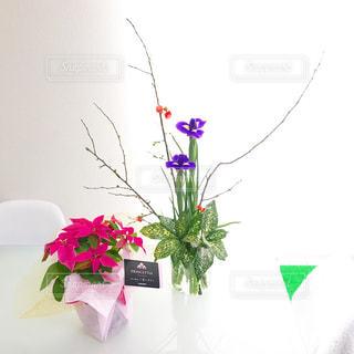 紫の花で満ちている白い花瓶の写真・画像素材[869650]