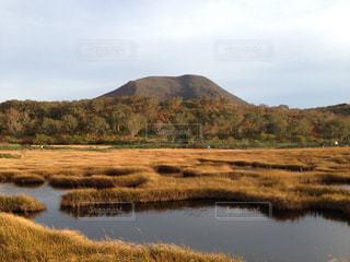 神秘の沼の写真・画像素材[847015]