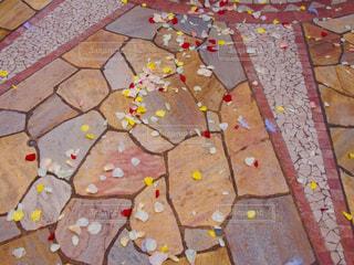 幸せの花の道の写真・画像素材[849902]