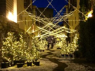 クリスマスの道の写真・画像素材[851966]