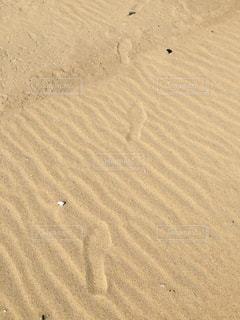 足跡が向かう未来の写真・画像素材[861870]
