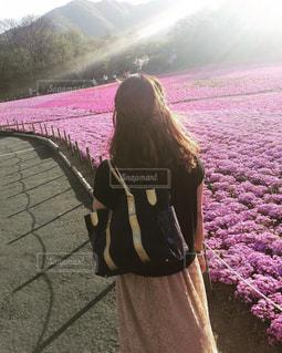 芝桜デートの写真・画像素材[847692]