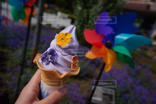 お花のソフトクリームの写真・画像素材[1266246]