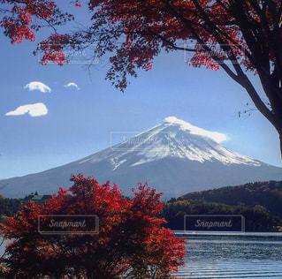 河口湖からの富士山 - No.850396