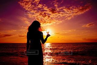 夕陽に乾杯の写真・画像素材[850682]