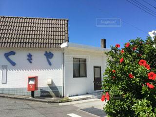 新島 - No.849049
