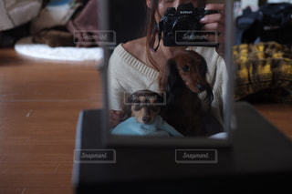 テーブルの上に座っている犬の写真・画像素材[850609]