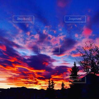 背景の夕日とツリーの写真・画像素材[850128]