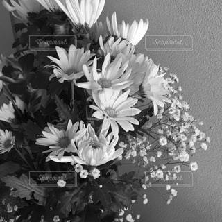 花束の写真・画像素材[854313]