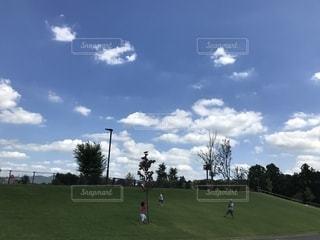 公園での写真・画像素材[1478671]