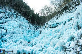 雪の上を歩く羊の群れにフィールドが覆われています。 - No.980211