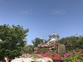 近くのフラワー ガーデンの写真・画像素材[851120]