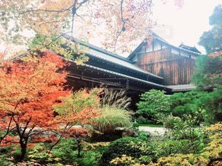 京都南禅寺 - No.880762