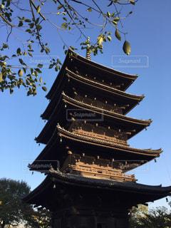京都、東寺、五重塔の写真・画像素材[853474]