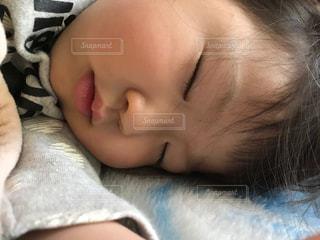 寝顔の写真・画像素材[863589]