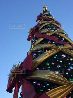 クリスマスツリーの写真・画像素材[853666]