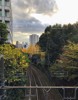 千登世橋より新宿方面を望むの写真・画像素材[888597]