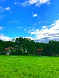 豊かな緑のフィールドと青空②の写真・画像素材[864118]