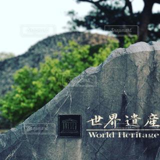 今帰仁城跡の写真・画像素材[856918]
