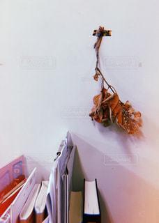 壁飾りの写真・画像素材[856493]