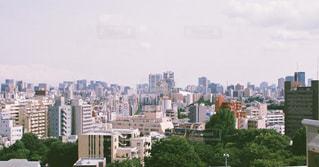 東京のまちなみの写真・画像素材[871263]