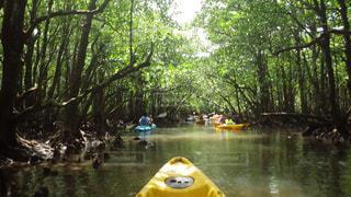 水の中の黄色のボートの写真・画像素材[856316]