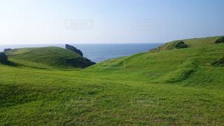 長崎県壱岐島の国定公園、緑豊かな緑の草原の写真・画像素材[859623]
