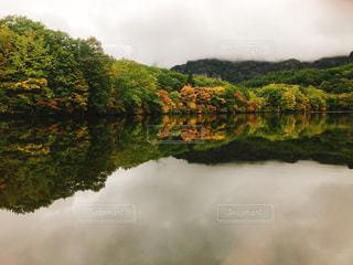 木々 に囲まれた水の体の写真・画像素材[858165]
