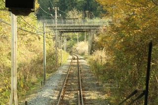 橋の上を走行する列車の写真・画像素材[857626]