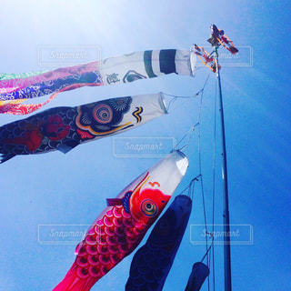 スキーに乗っている間空気を通って飛んで男の写真・画像素材[859019]