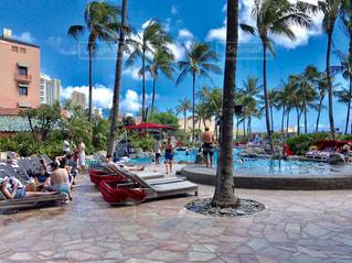ハワイのプールの写真・画像素材[863332]