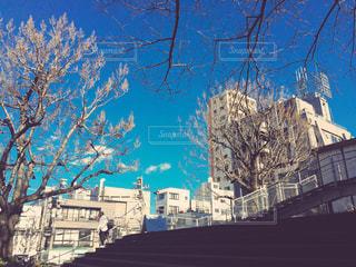 神楽坂の写真・画像素材[863860]