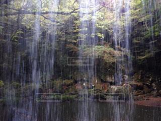 滝の裏側の写真・画像素材[859865]