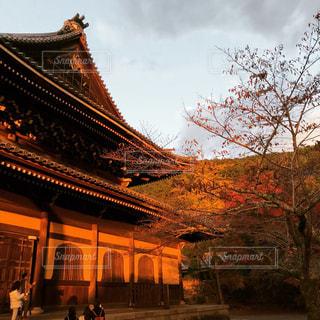 夕暮れの南禅寺と紅葉の写真・画像素材[859245]