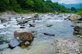 鬼怒川の川の写真・画像素材[859281]