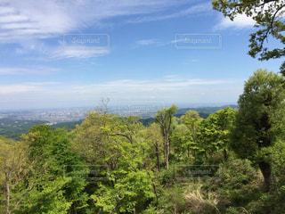 高尾山からよ景色の写真・画像素材[859463]