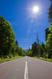 夏の北海道の道の写真・画像素材[859743]
